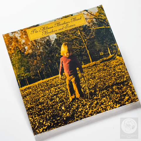 Vinil LP Allman Brothers Brothers And Sisters 180g Lacrado