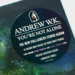 Vinil LP Andrew W.K. You're Not Alone 2LPs Colorido Lacrado na internet