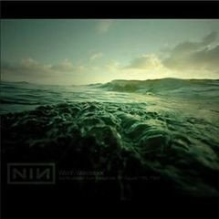 Nine Inch Nails - Wild in Woodstock 2xLP
