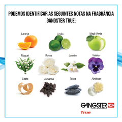 KIT com 2 Perfumes Gangster - 1 un True + 1 un One na internet