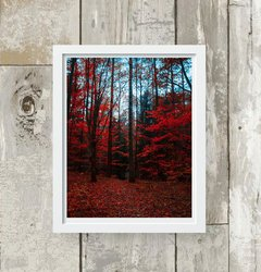 quadro red trees moldura branca