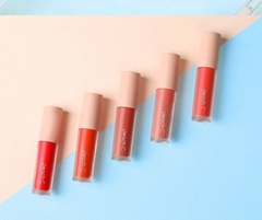 Peach C -  Peach Holiday Tint