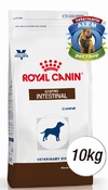 ROYAL CANIN - VET DOG GASTRO INTESTINAL - (10 KG)