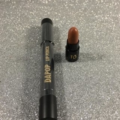 HB97981-10 Labial mate crayón COLOR 10 - DAPOP