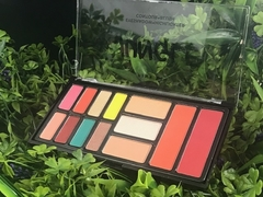 CS2538-2 Paleta de sombras JUNGLE  TONO 2 -Pink 21 en internet