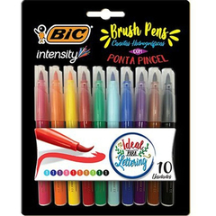 Intensity Brush Pens 10 Cores