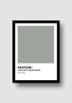 Cuadro Pantone Cool Grey en internet