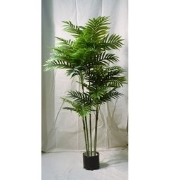 Areca (Artificial) en internet