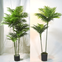 Areca (Artificial)
