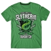 Remera Slytherin Quidditch Talle L